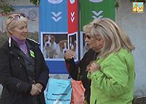 Открытие выставки собак Осенняя легенда 2015